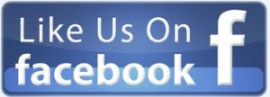 facebook like us icon