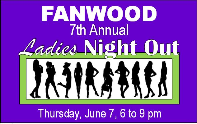 7th annual ladiesnight out graphic